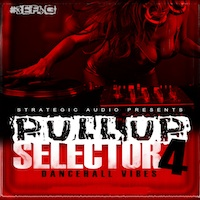 Pull Up Selector: Dancehall Vibes Vol.4 - Get that authentic West Indian street sound in your projects