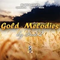 Gold Melodies Big Pack 2 - 90 fantastic MIDI melodies for producing all kinds of Electronica