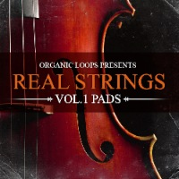 Real Strings Vol.1 - From soaring melodies to rhythmic stabs, Real Strings provides true flavor