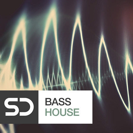 Bass House - Take your beats to the next level and liven up the dance floor