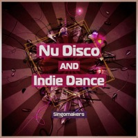 Nu Disco and Indie Dance - An expansive fusion of Nu Disco, Nu Rave and Indie Dance