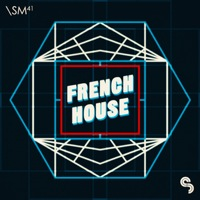 French House - Filtered funk, robot electro and disco punk with a French touch