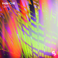 Indie Chill product image