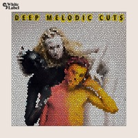 Deep Melodic Cuts product image
