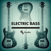 Electric Bass product image