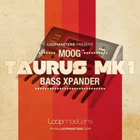 Moog Taurus MK1 - Bass Expander