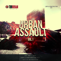 Urban Assault Vol.1 - Killer vibes, heart-felt grooves with down-to-earth live instrumentation
