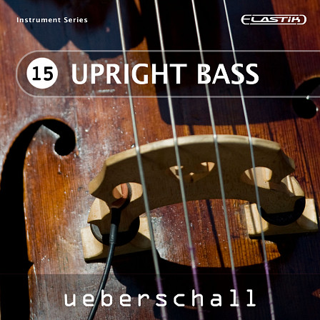 Upright Bass - 437 loops full of that special upright bass sound