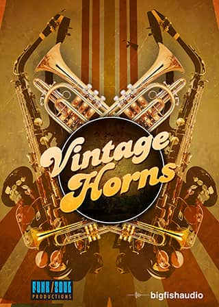 Vintage Horns product image