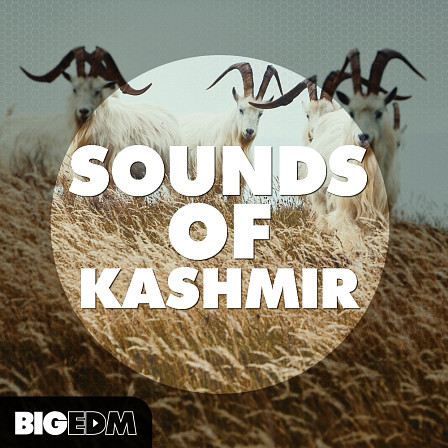 Sounds Of Kashmir - A must have pack for all serious EDM producers