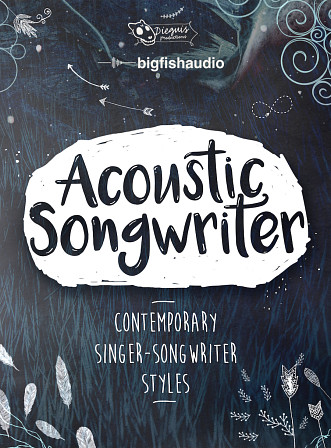Acoustic Songwriter product image