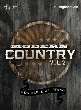 Modern Country Vol.2 - Modern Country Styles
