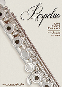 Perpetuo: Live Flute Phrases - Rhythmic patterns for minimalist flute ensembles and subtle cinematic production