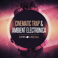 Cinematic Trap & Ambient Electronica product image