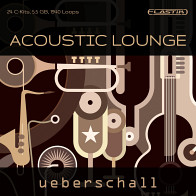 Acoustic Lounge product image