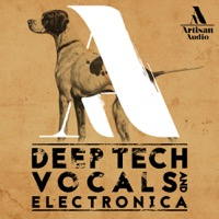 Deep Tech Vocals & Electronica product image