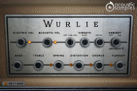 Wurlie product image