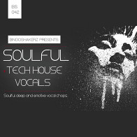 Soulful Tech House Vocals product image