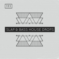 Slap Bass House Drops product image