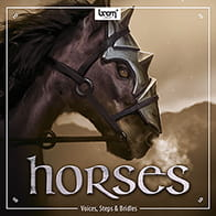 Horses: Voices, Steps & Bridles product image