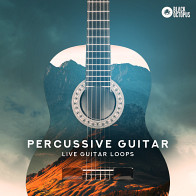 Percussive Guitar product image