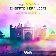 Cinematic Indian Loops product image