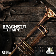Spaghetti Trumpet product image
