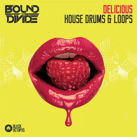 Delicious House Drums & Loops product image
