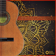 Striking Latin Guitar product image
