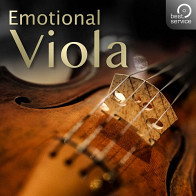 Emotional Viola Orchestral Instrument