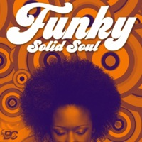 Funky Solid Soul product image