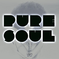 Pure Soul product image