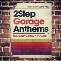 2Step Garage Anthems product image