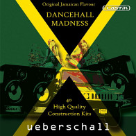 Dancehall Madness product image