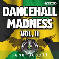 Dancehall Madness Vol. 2 product image