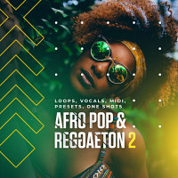 Afro Pop & Reggaeton 2 product image