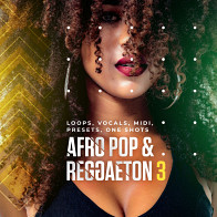 Afro Pop & Reggaeton 3 product image