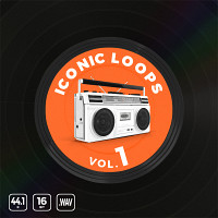 Iconic Loops Vol.1 product image