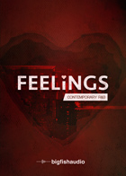 FEELINGS: Contemporary R&B product image