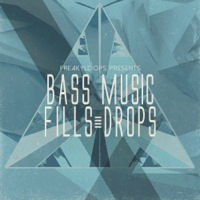 Bass Music Fills & Drops product image