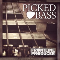 Picked Bass product image