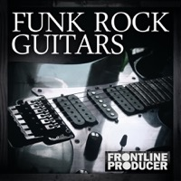 Funk Rock Guitars product image