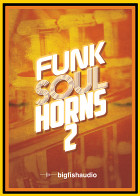 Funk Soul Horns 2 product image