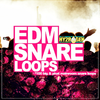 EDM Snare Loops product image