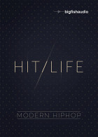 Hit Life: Modern Hip Hop product image