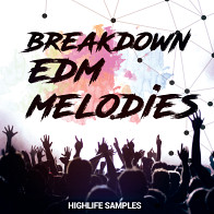 Breakdown EDM Melodies product image