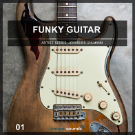 Funky Guitar 1 - Disco & House Edition product image