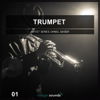 Trumpet 1 – The Real Live Touch product image