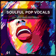 Soulful Pop Vocals 1 product image