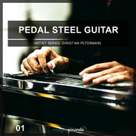 Pedal Steel Guitar 1 product image